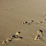 Photo de traces de pas dans le sable